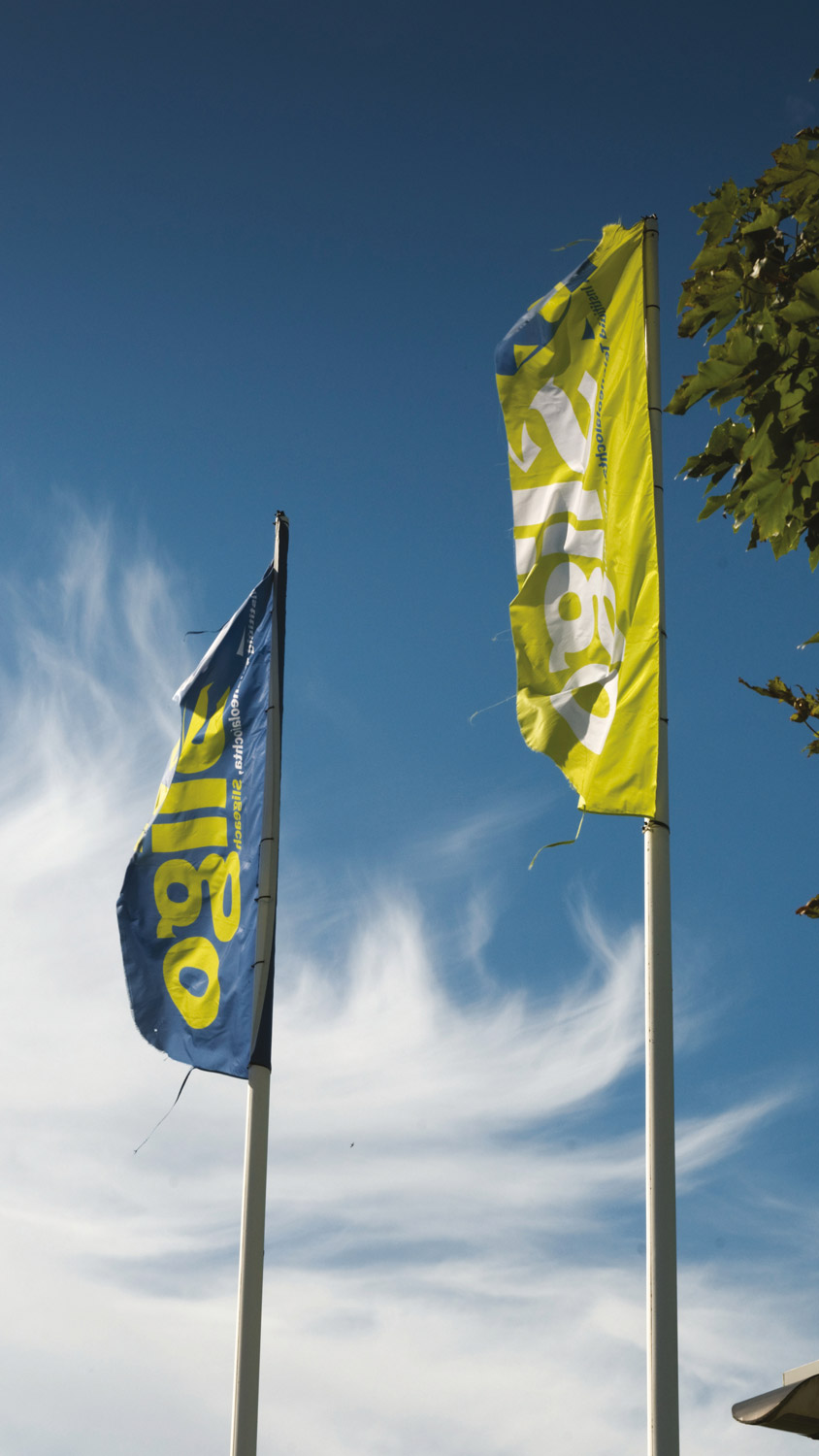 IT Sligo Flags