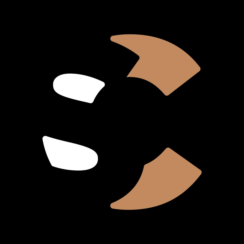 Sean Cavanagh & Co logo