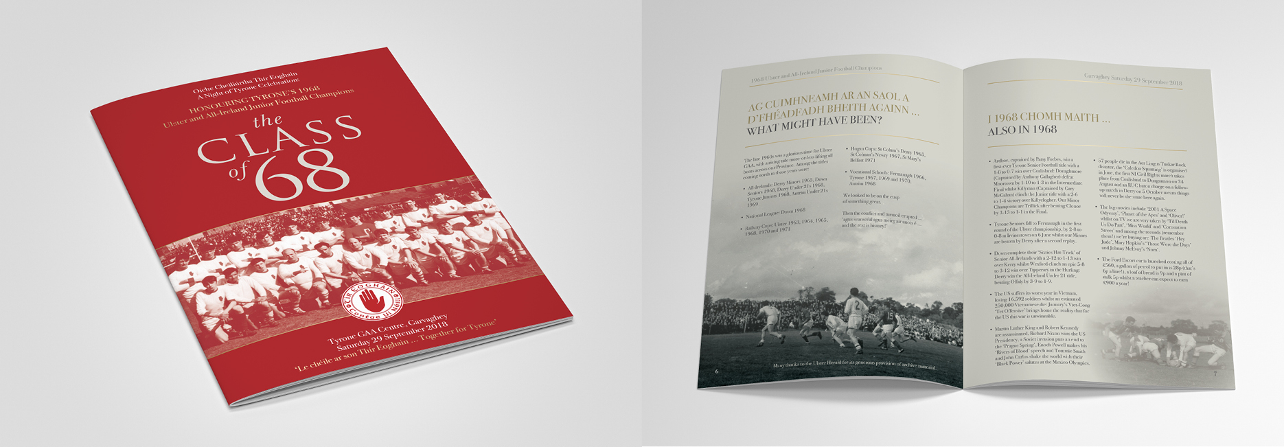 Tyrone GAA Christmas Brochure